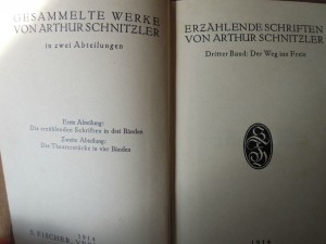 Gesammelte Werke von Arthur Schnitzler 1914