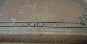 Ausgewahlte Novelletten 1881 Buch