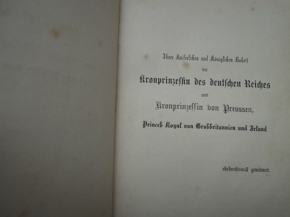 Der Zauberer Merlin 1871 Buch