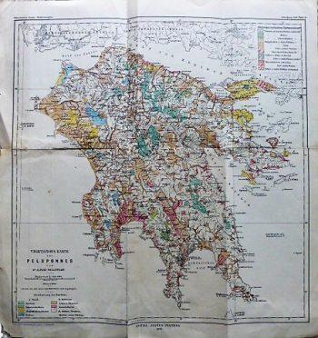 Vegetation's Karte Des Peloponnes 1895 map